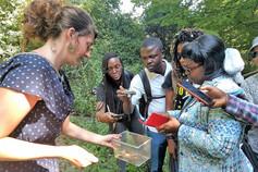 Studierende aus Kamerun und der Schweiz betrachten Laub